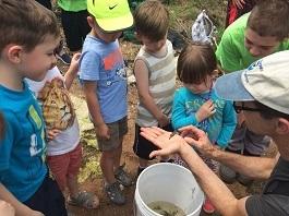 children gather around a net looking at fish