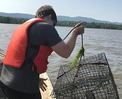 A man in an orange life jacket stand in a boat lowering a crab pot into the Hudson River.