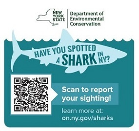 shark spotter survey logo