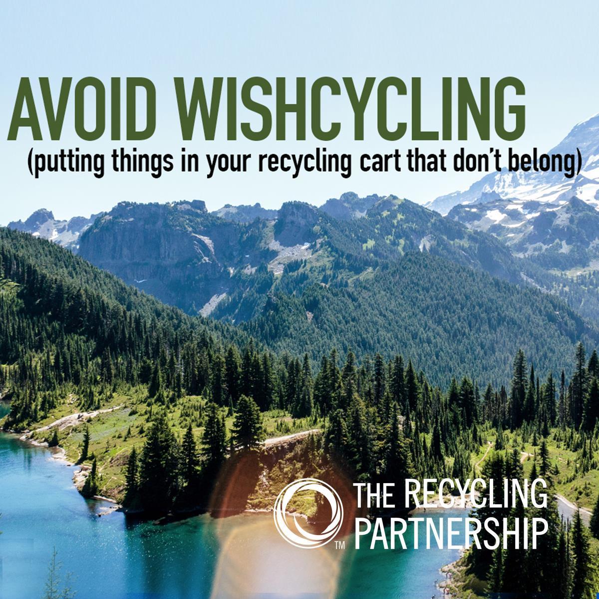 Avoid Wishcycling