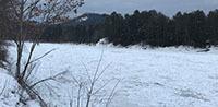 Ice meadows