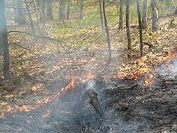 brush burning