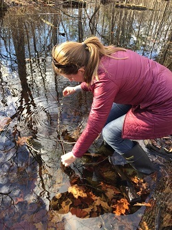 A woman in a red down coat and black rubber boots stands in a woodland pool and lifts a stick with frogs eggs.