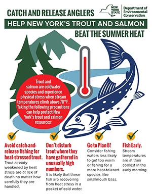 Summer trout fishing guidance