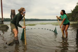 Two women with face masks and wearing boots stand in the Hudson River holding two ends of a seine net.