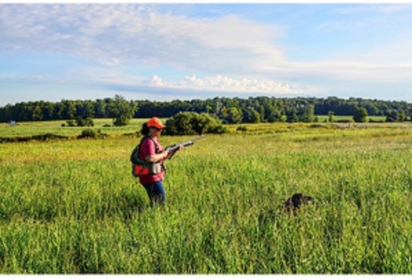 Woman hunter standing in a meadow with a dog holding a shotgun
