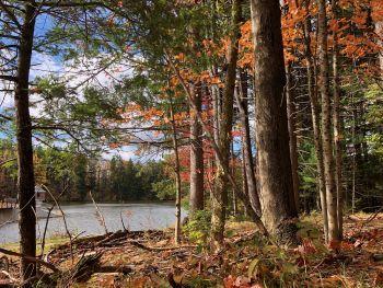 Clear Lake WMA