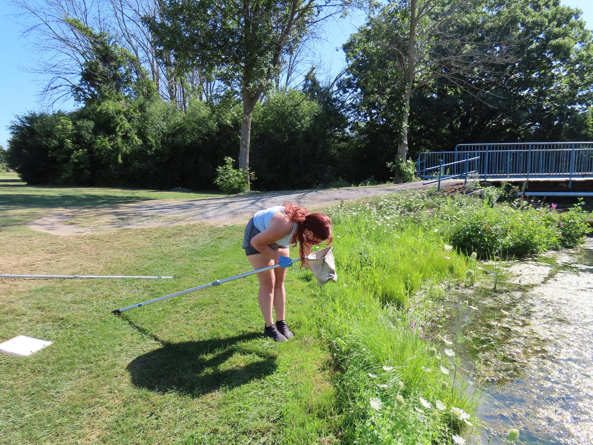 Sampling Training Hyde Park