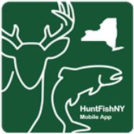 Hunt Fish NY App logo