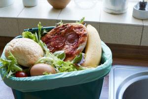 Air Food Scraps bin