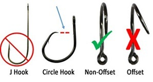 Various hooks including the correct circle hook