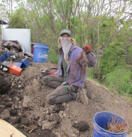 A woman wearing a mask sits amidst soil and pots holding up a bare-root seedling.