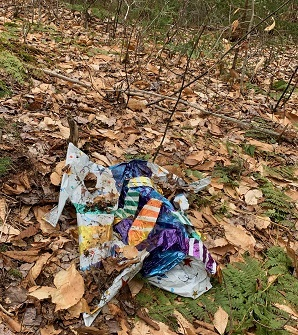 balloon found in the woods