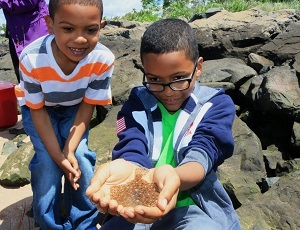 Two boys excitedly hold a window pane flounder (a type of flat fish) in their hands.