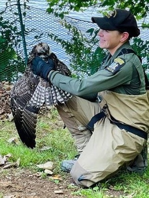 ECO with rescued osprey