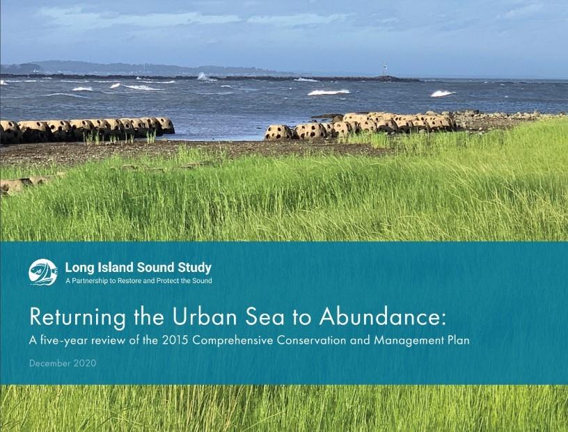 Urban Sea Abundance Report Cover