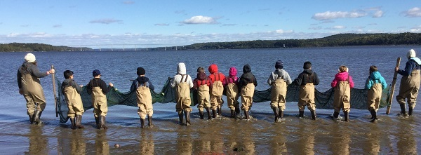 A line of students wearing waders stand in the Hudson with a seine net.
