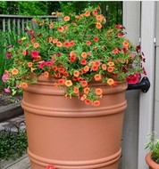 rain barrel with flowers on top