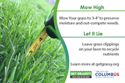 Get Grassy logo and ruler in grass