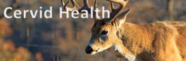 Cervid Health