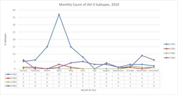 IAV-S 2019