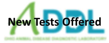 new test