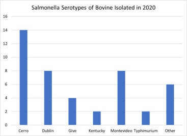 Salmonella_serotypes