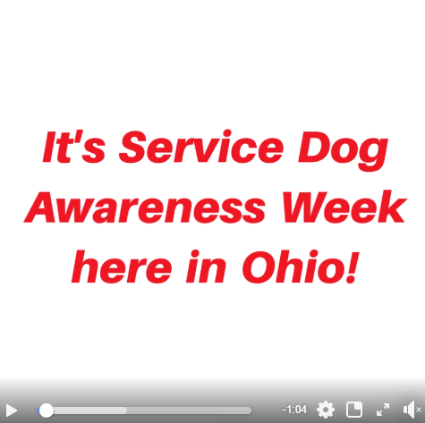 Screen shot from Facebook video about Service Dog Awareness Week
