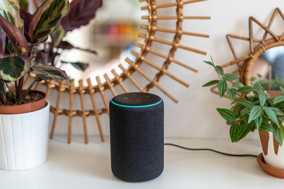 Photo of an Alexa speaker tower on a shelf with plants and a mirror