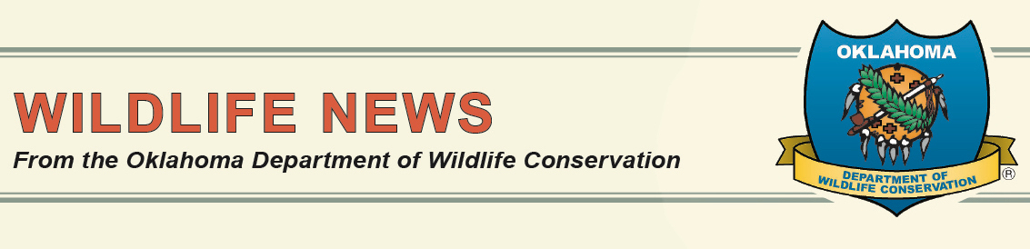 Banner Wildlife News A