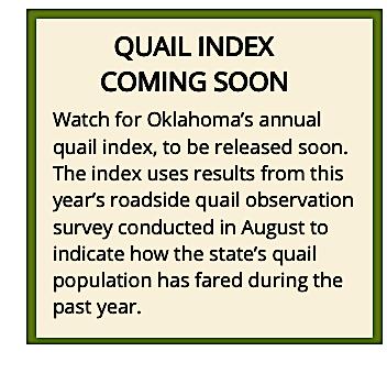 quail index soon