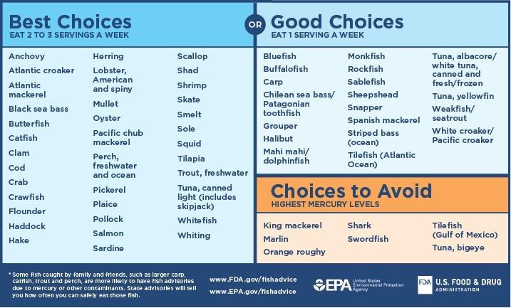 Pregnant Food Chart