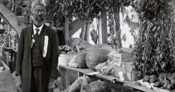Harvest market historic photo