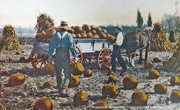 Men carrying pumpkins at harvest