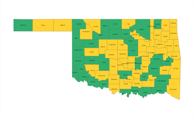 County Level Risk Map