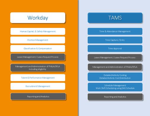 Workday vs TAMS
