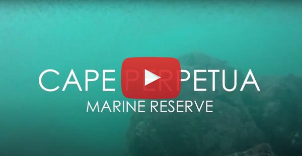 Cape Perpetua video