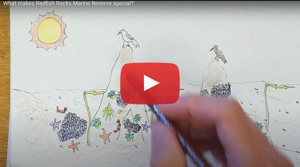 Redfish Rocks video
