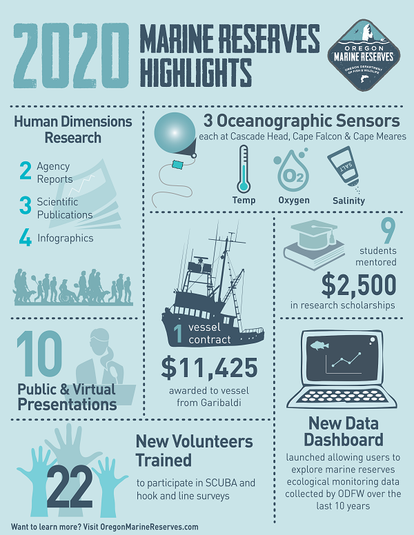 2020 Program Highlights Infographic