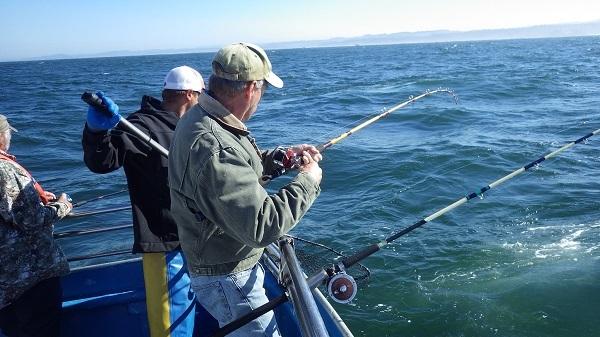 Sport angler fishing for groundfish