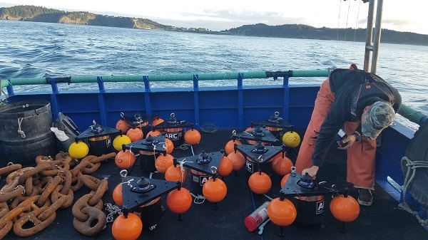 Researcher on the back deck of F/V Alice Faye preparing moorings with acoustic receivers