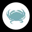 crab icon