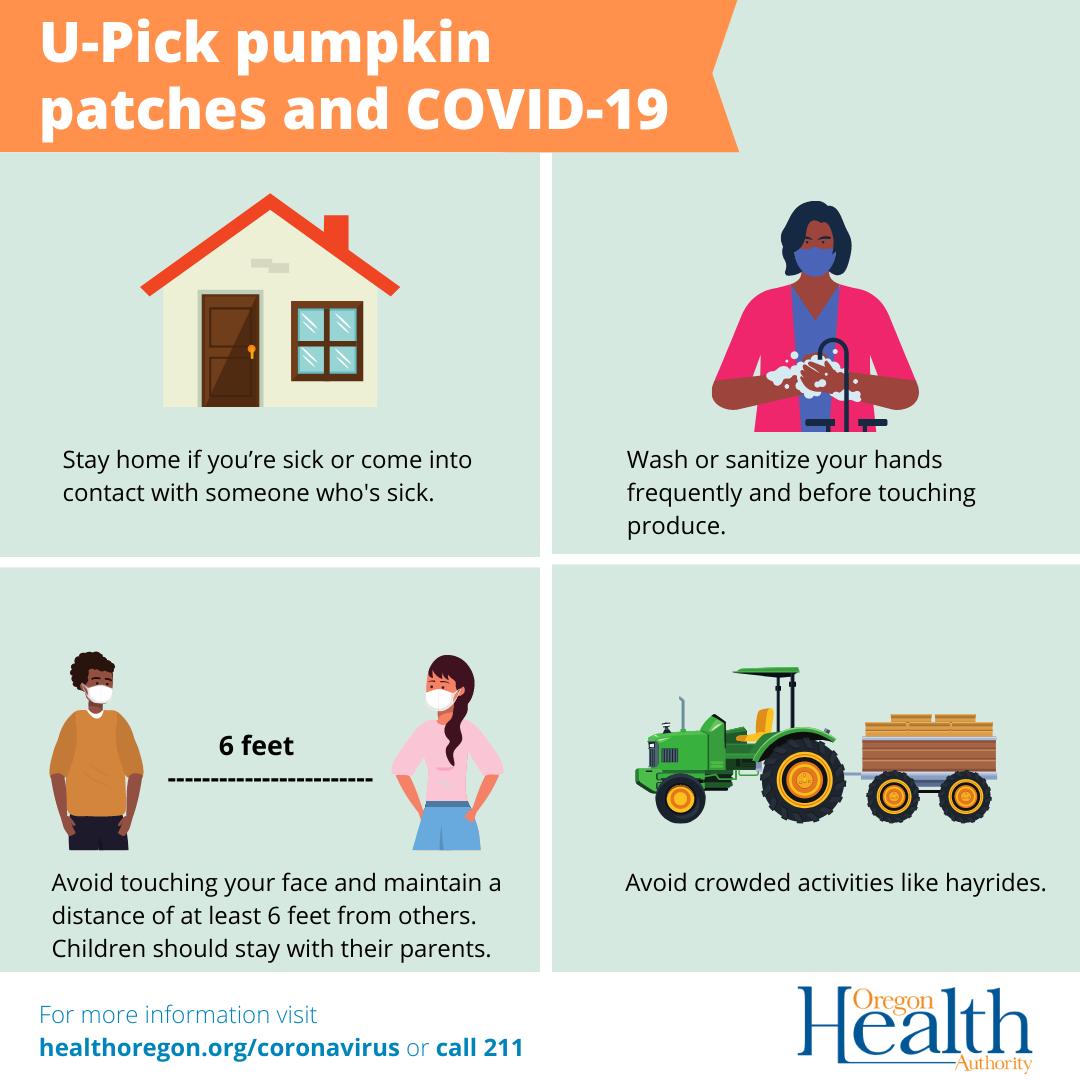 U-Pick pumpkin patches and COVID-19
