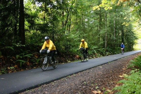 Bicyclists riding down a paved trail surrounded by woods.