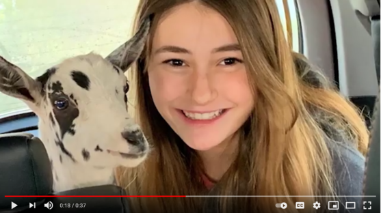 Young person with long straight hair smiles at the camera with a small goat next to her in the car.