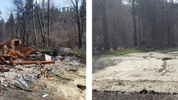 Debris Cleanup Before and After