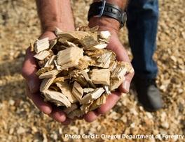 Biomass!