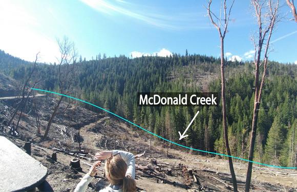 McDonald Creek Streamside Logging photo