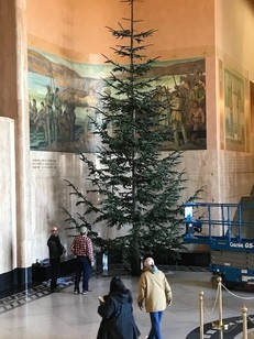 Capitol Holiday Grand Tree arrived for decorating