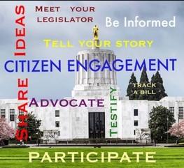 Citizen Engagement Graphics